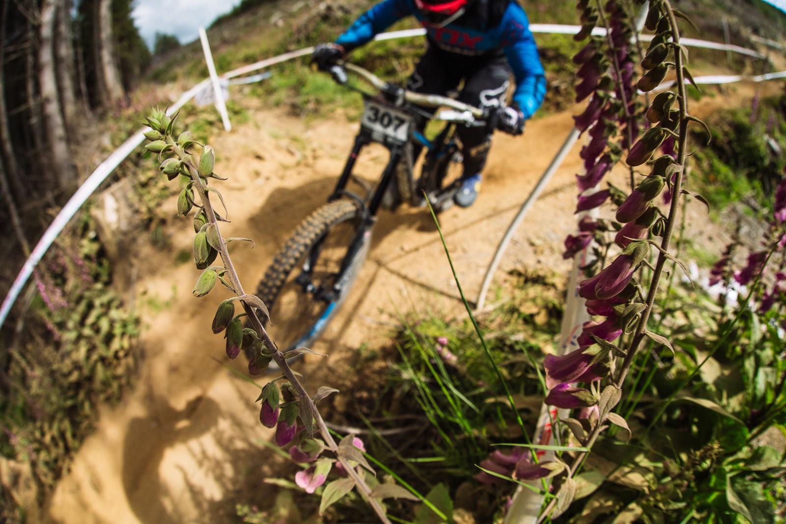Dust Life, British DH Series, Bala - RACE REPORT - 2015 British Downhill Series Bala - Mountain Biking Pictures - Vital MTB