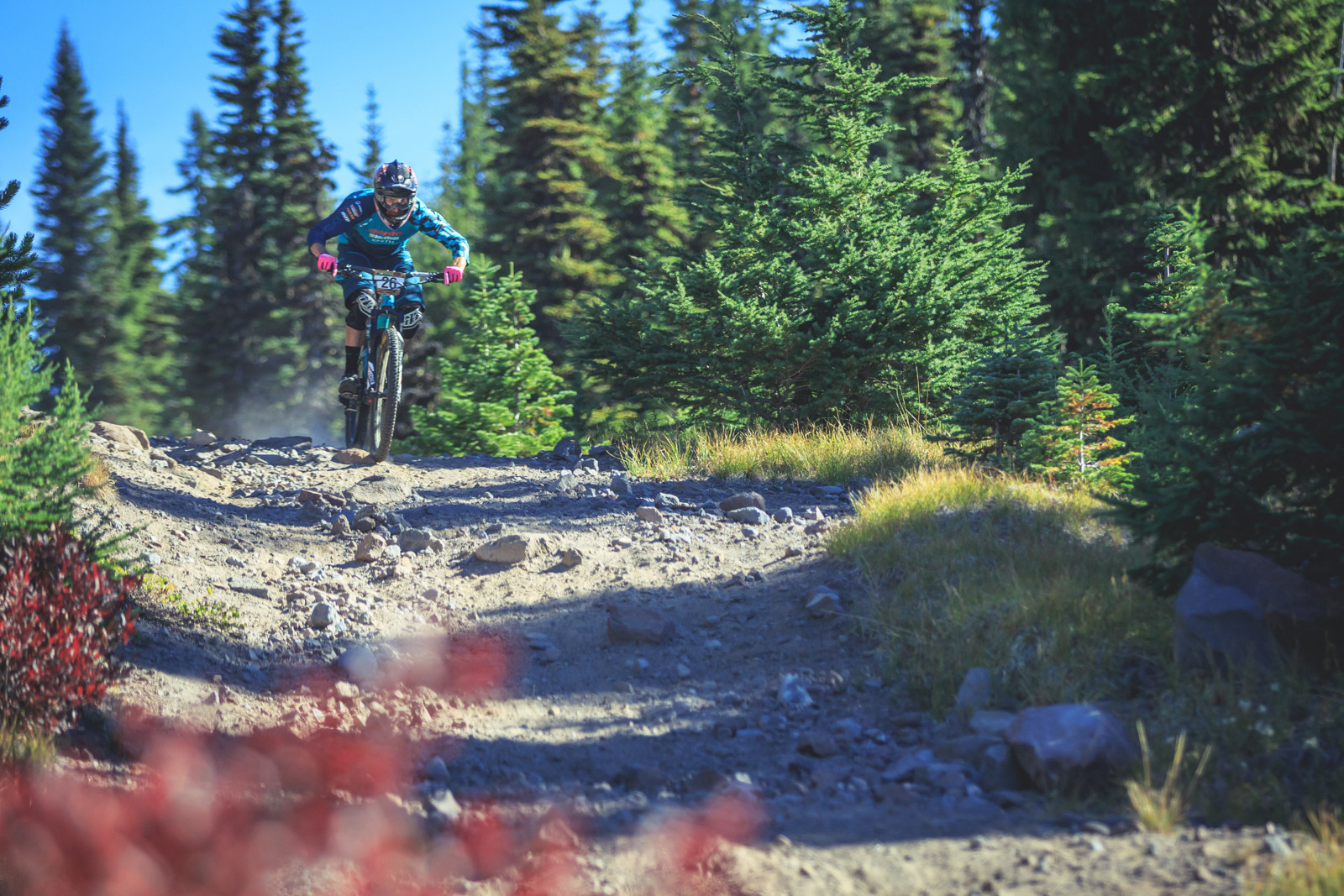 Nate Hills - 2015 Oregon Enduro Series Finals Mt. Hood - Mountain Biking Pictures - Vital MTB