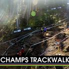 C138_trackwalka