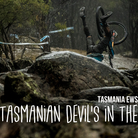 The Tasmanian Devil's in the Details - Enduro World Series Race Show