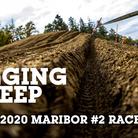 SLIDESHOW - Maribor World Cup Downhill Race 2 of 2