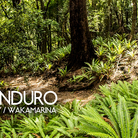 The New Zealand Enduro - Day 2 & 3, Nydia Bay and Wakamarina