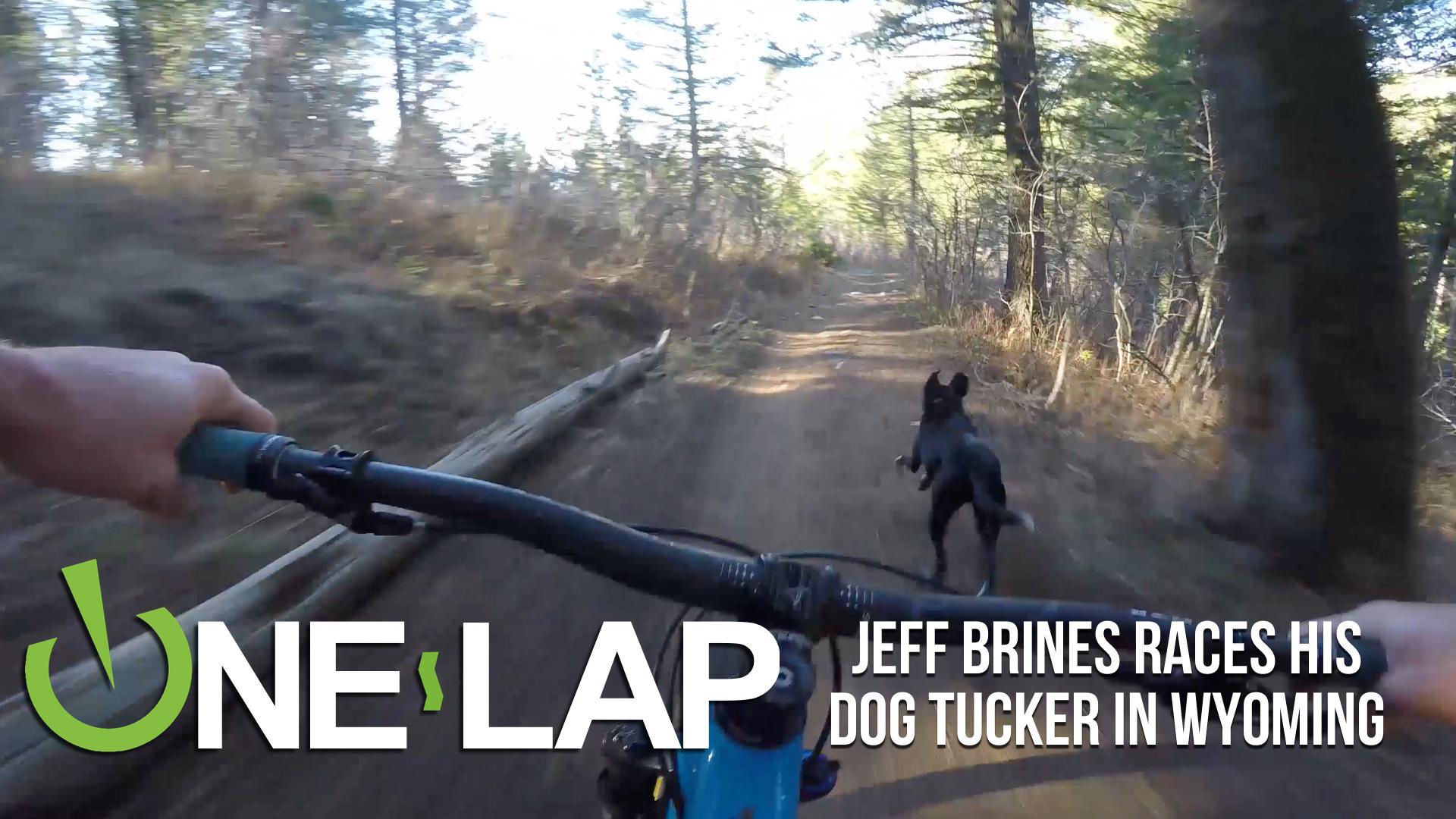 ONE LAP - Jeff Brines Races His Dog Tucker in Targhee, Wyoming