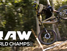 Vital RAW - World Champs DH Wild & Reckless