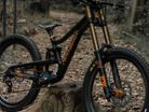 Carbon DH Bikes for 5 to 15-year Olds - MeekBoyz