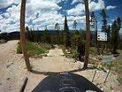 Trestle Downhill Trail at Trestle Bike Park