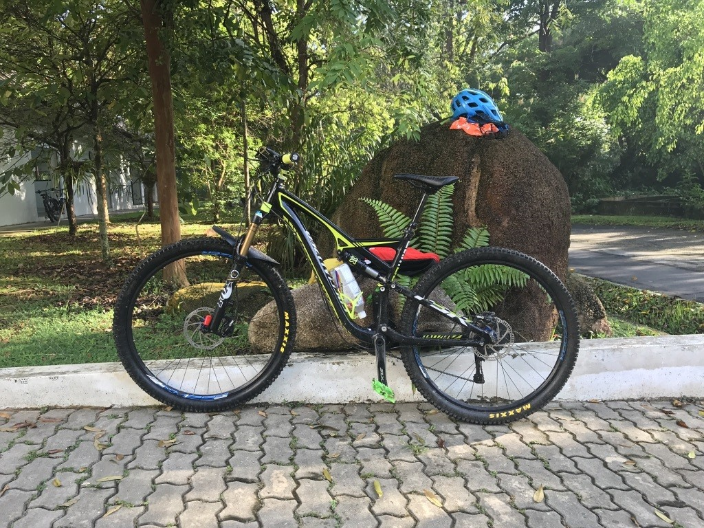 Specialized Camber 29 #LRD