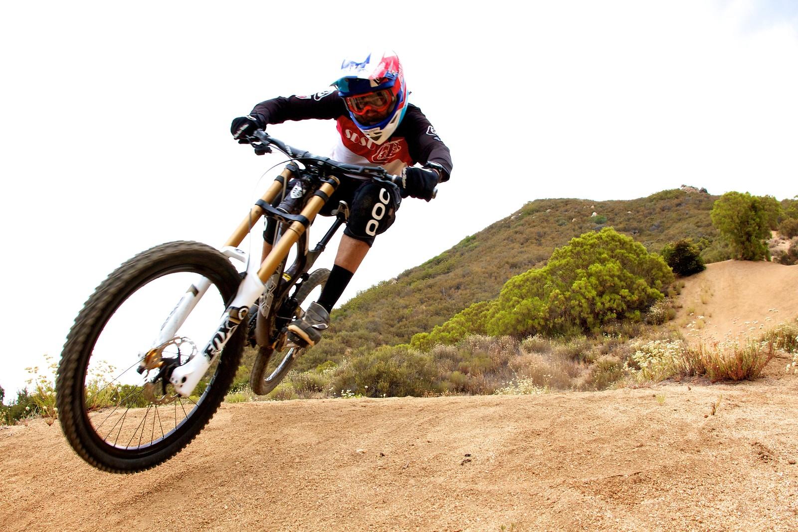 Pine Life - ALF - Mountain Biking Pictures - Vital MTB
