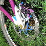 superstar floating rotor with purple and gold ti rotor bolts