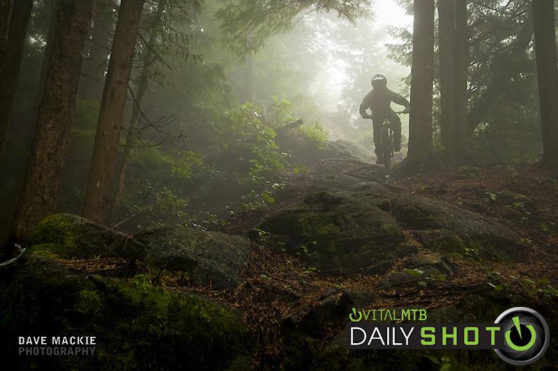 Enter the fog - dave-m - Mountain Biking Pictures - Vital MTB