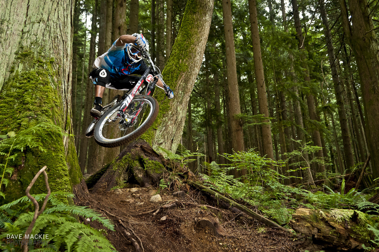 Green is good - dave-m - Mountain Biking Pictures - Vital MTB