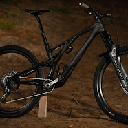 "2021 Specialized Stumpjumper ""Black Sheep"" EVO"