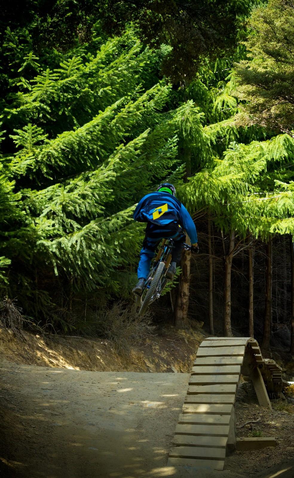 Hammies  Wood - Banditdh - Mountain Biking Pictures - Vital MTB
