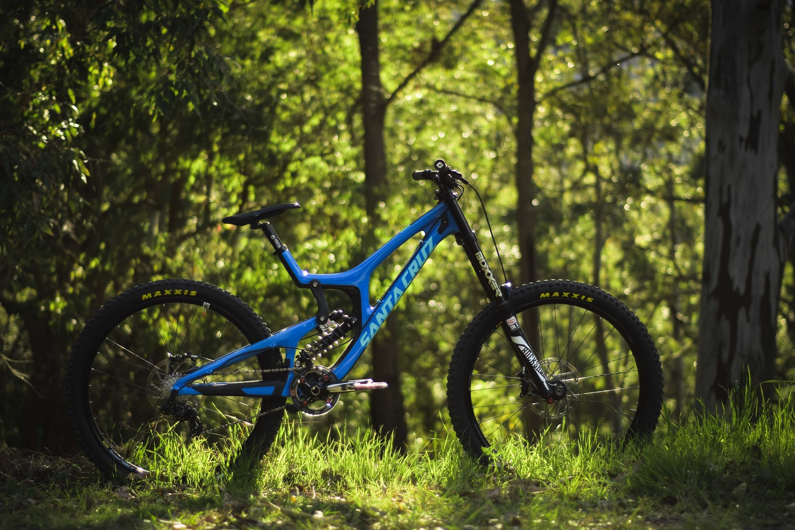 Patrick Butler's Blue Santa Cruz V10 CC