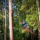 Makawao Forest Trails, Maui, Hawaii