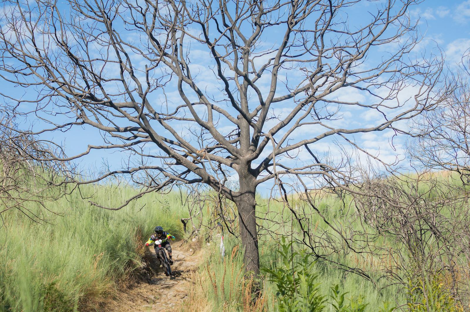 Emanuel Pombo - miguelbento - Mountain Biking Pictures - Vital MTB