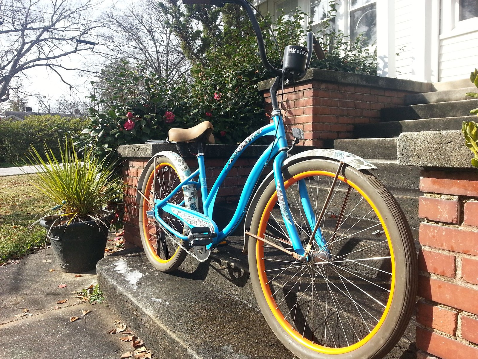 Electra Tiki cruiser (wife's bike)