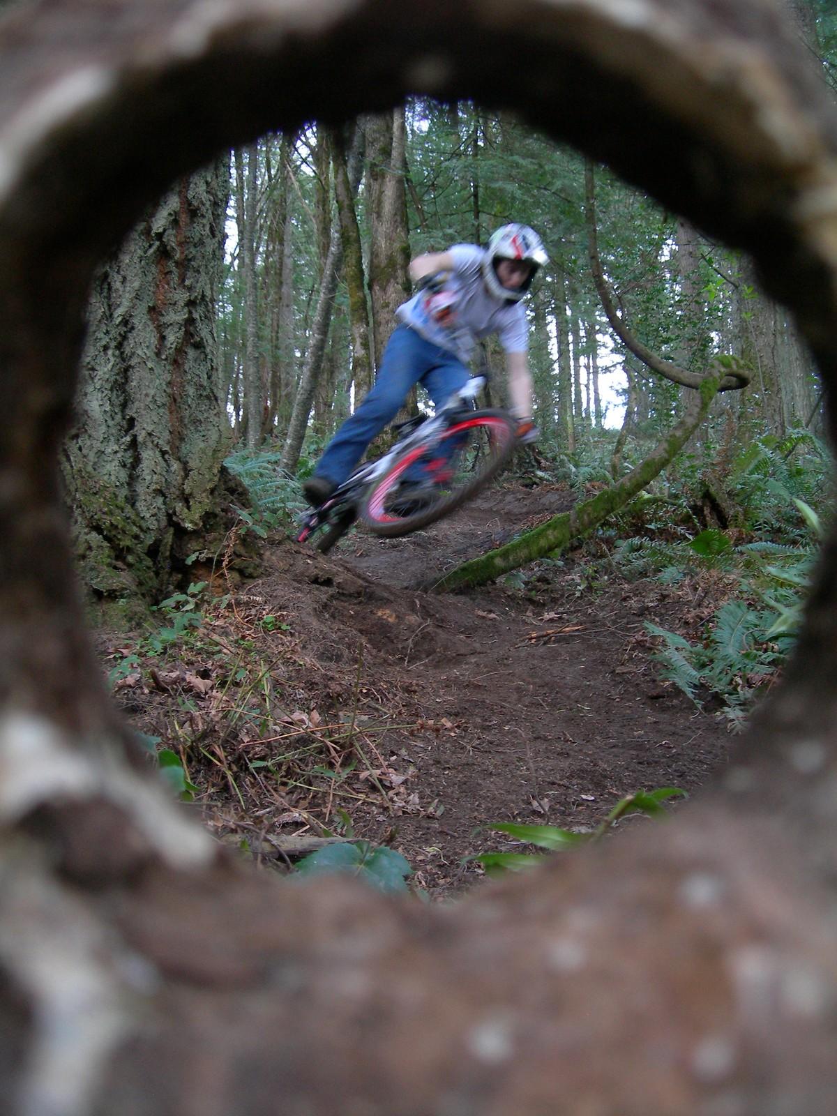 The Dojo - Derek939 - Mountain Biking Pictures - Vital MTB