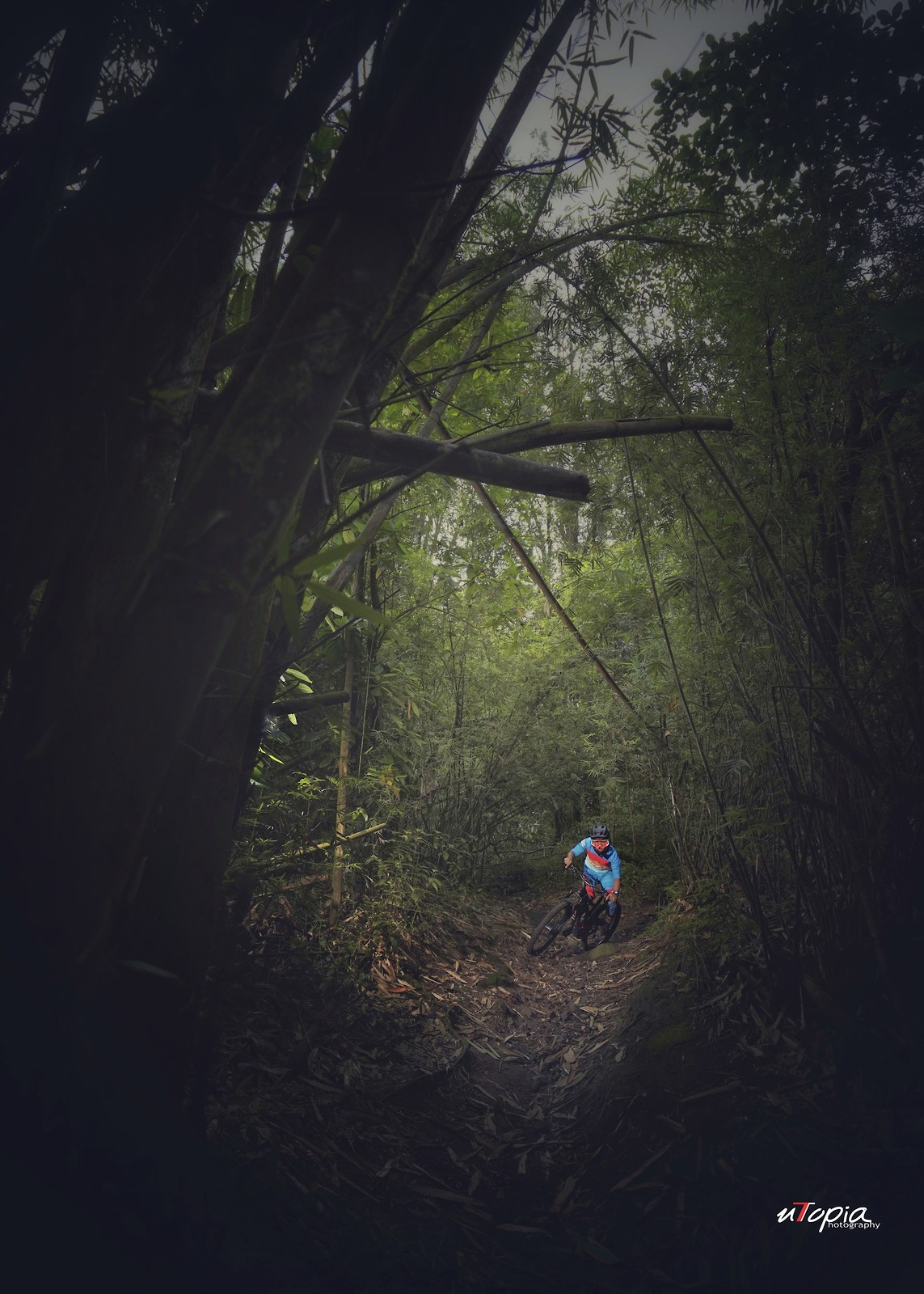 Gloomy Ride - utopiaarch - Mountain Biking Pictures - Vital MTB