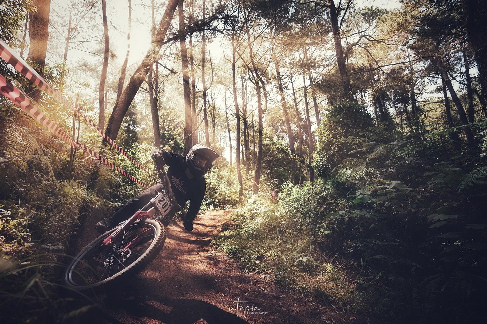 The Light  - utopiaarch - Mountain Biking Pictures - Vital MTB
