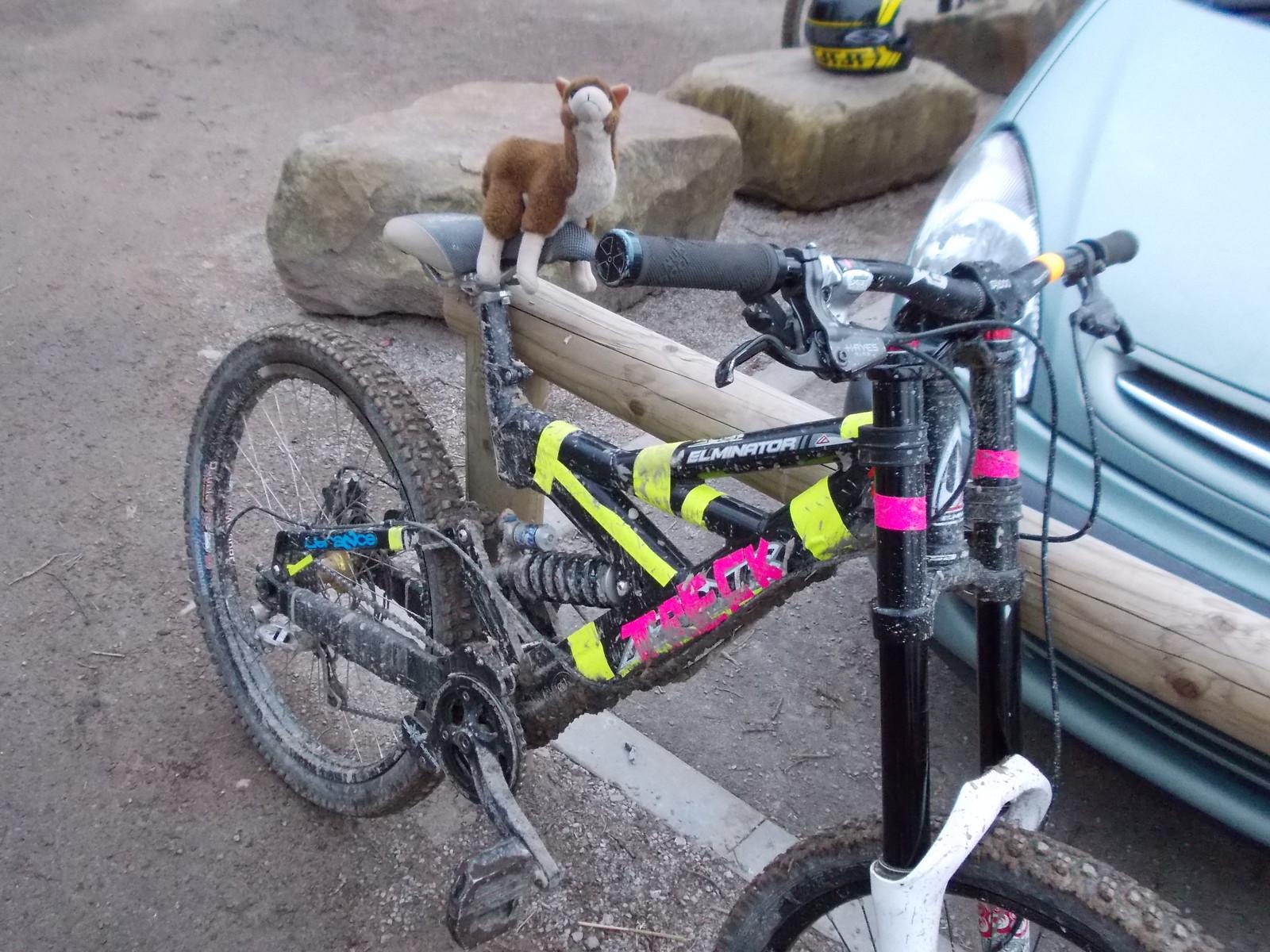 azonic  elimonator  with a llama