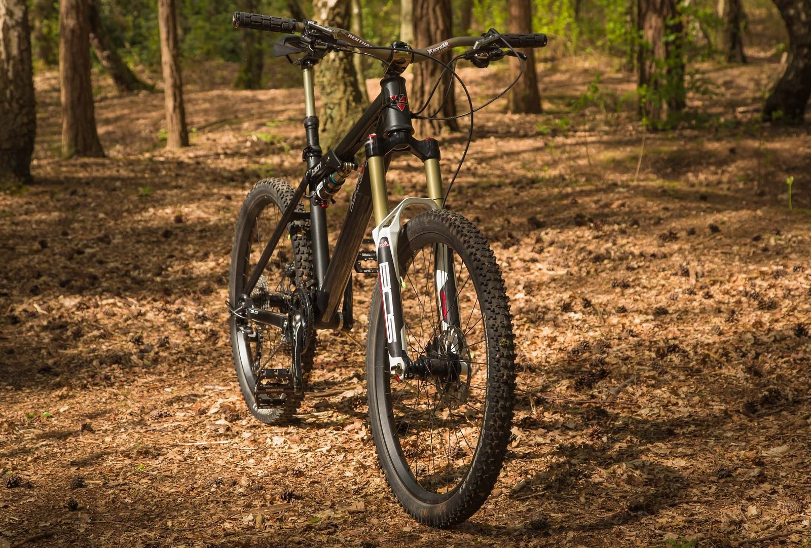 Liteville 301 mk11 m  5 - teknorob - Mountain Biking Pictures - Vital MTB