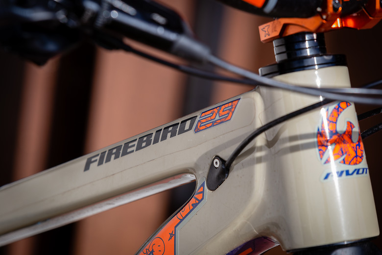 Pivot Firebird 2020 by Stromp
