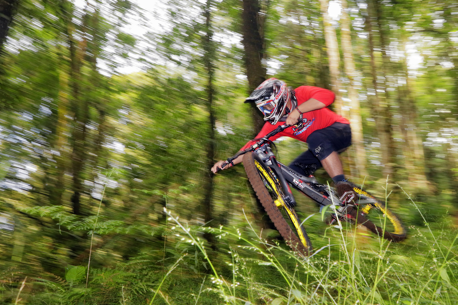 The Green Room  - bismojo - Mountain Biking Pictures - Vital MTB