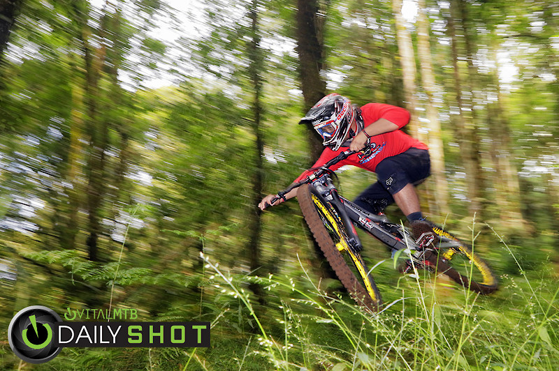 The Green Room  - bismojo - Mountain Biking Pictures - Vital MTB