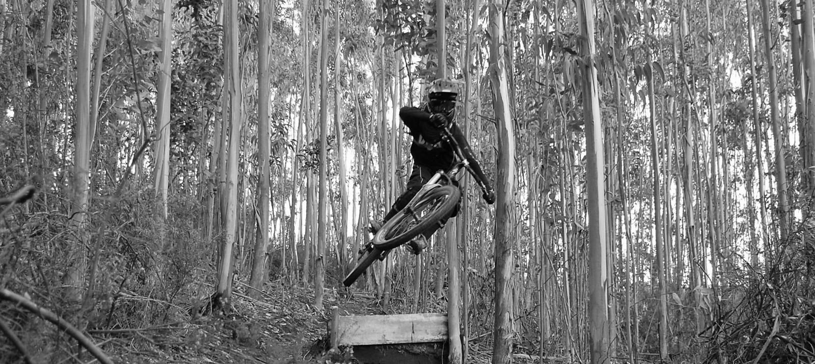 Paul track - antonio.mendes.3363 - Mountain Biking Pictures - Vital MTB