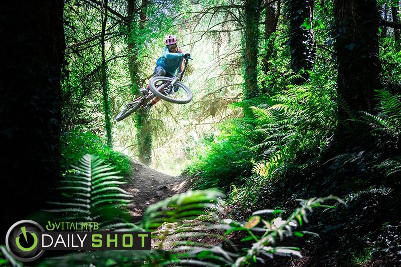 jumanji - Wayne DC - Mountain Biking Pictures - Vital MTB
