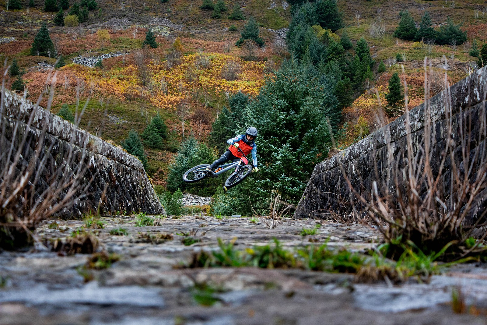 Reservoir Dog - Wayne DC - Mountain Biking Pictures - Vital MTB