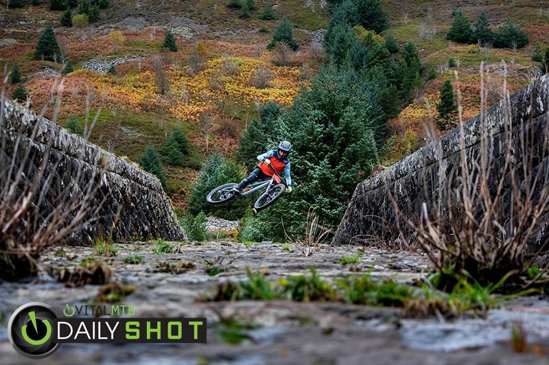Reservoir Dog - Wayne DC - Mountain Biking Pictures - Vital MTB