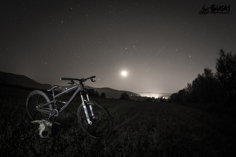 Dartmoor Shine
