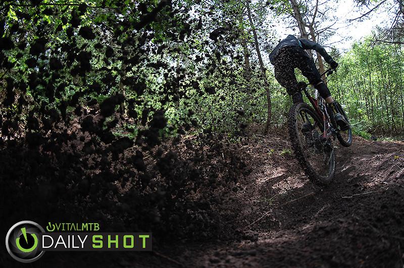 Owen Robinson - Roost - CaldwellVisuals - Mountain Biking Pictures - Vital MTB