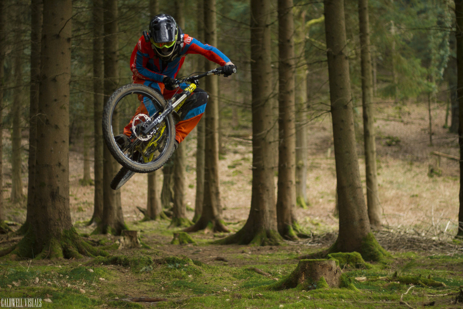 Hopping through the forest - CaldwellVisuals - Mountain Biking Pictures - Vital MTB