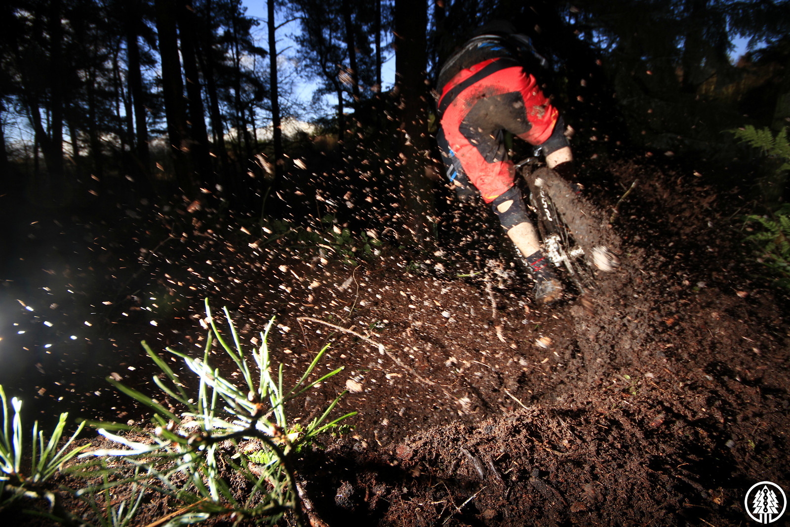 Lit up loam - CaldwellVisuals - Mountain Biking Pictures - Vital MTB
