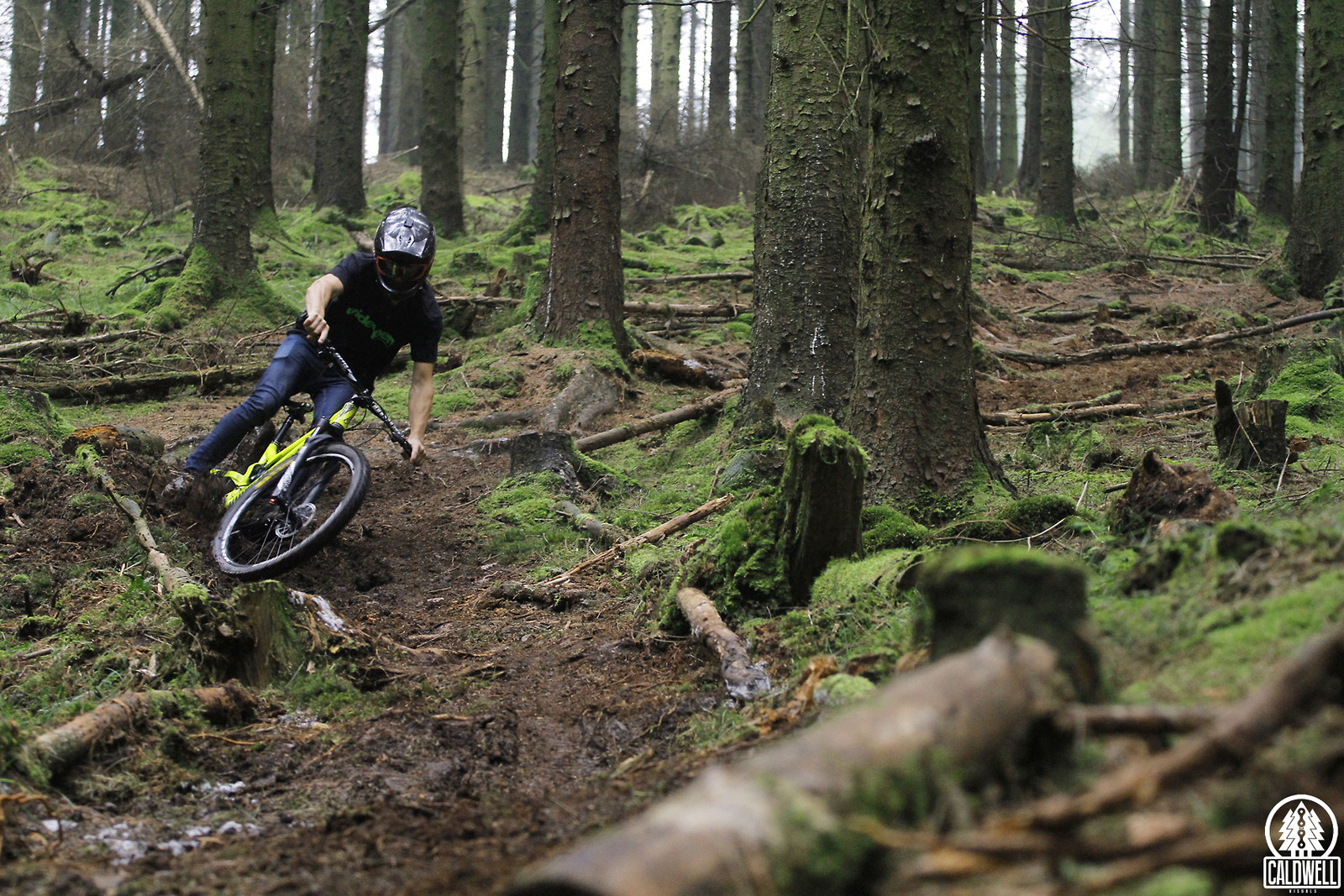 Deep in mossy loam - CaldwellVisuals - Mountain Biking Pictures - Vital MTB