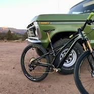 Green Mojave Stumpy 🐍