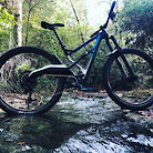 2019 Marin Wolf Ridge 8