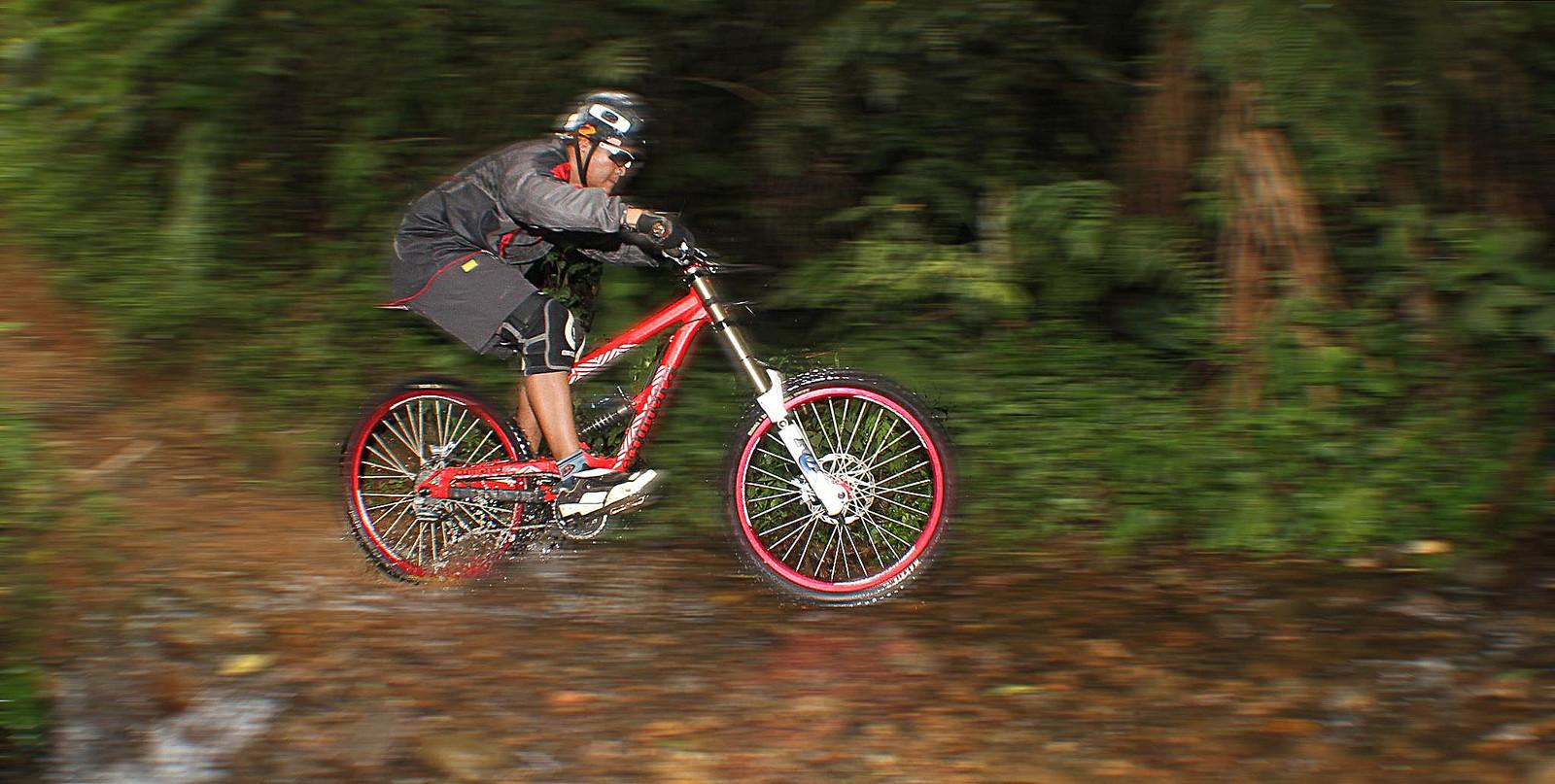 comencal - budi - Mountain Biking Pictures - Vital MTB