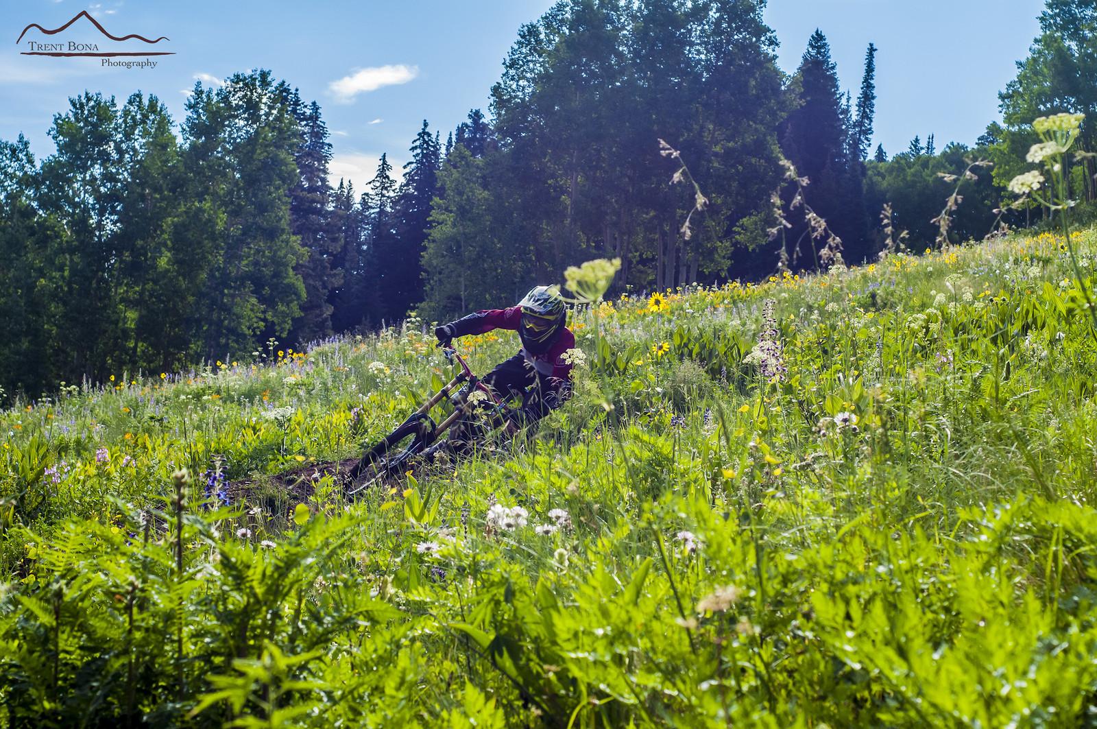 Digging Deep - Evolution Bike Park - Mountain Biking Pictures - Vital MTB