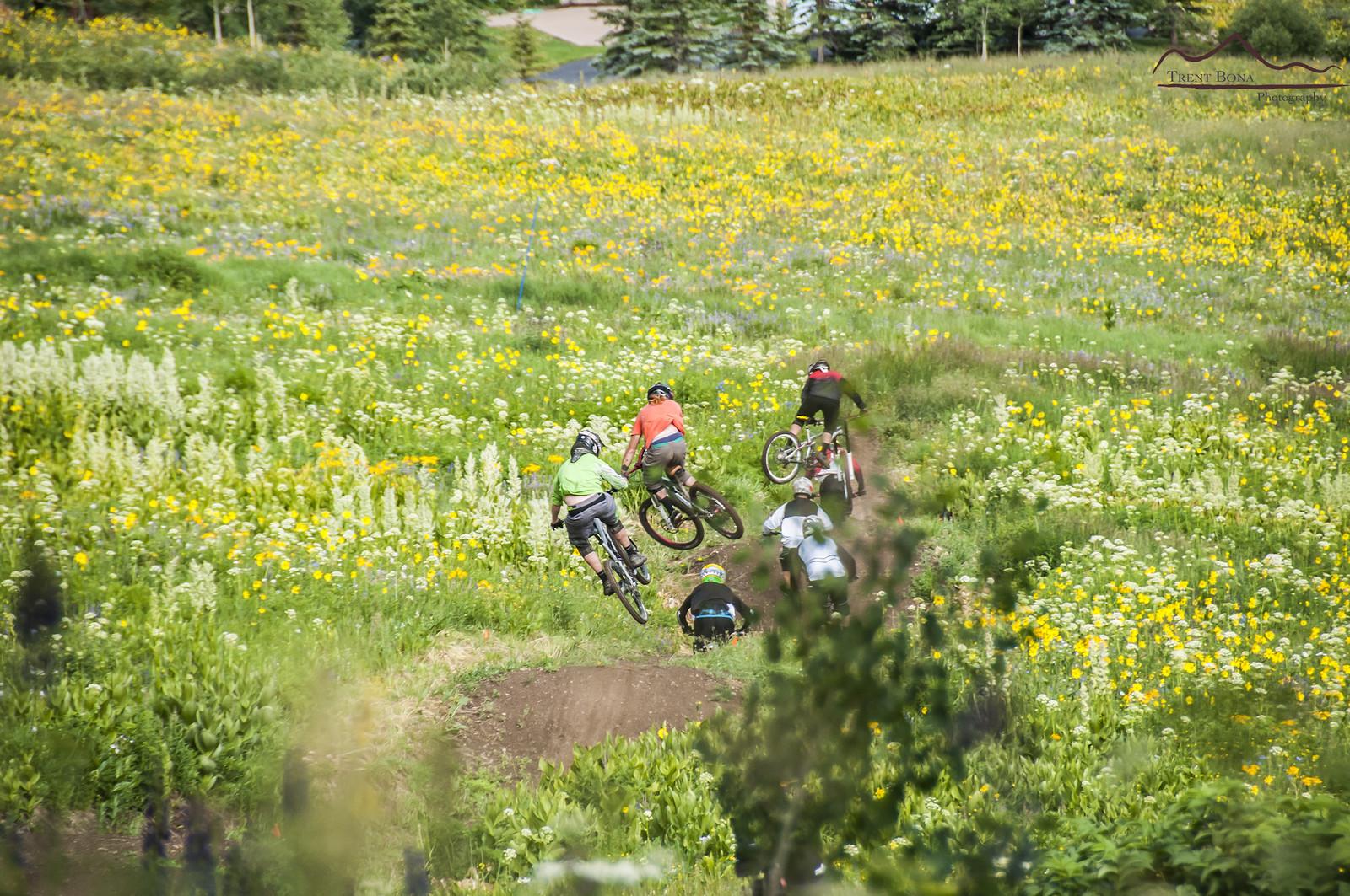 Train Sending It - Evolution Bike Park - Mountain Biking Pictures - Vital MTB