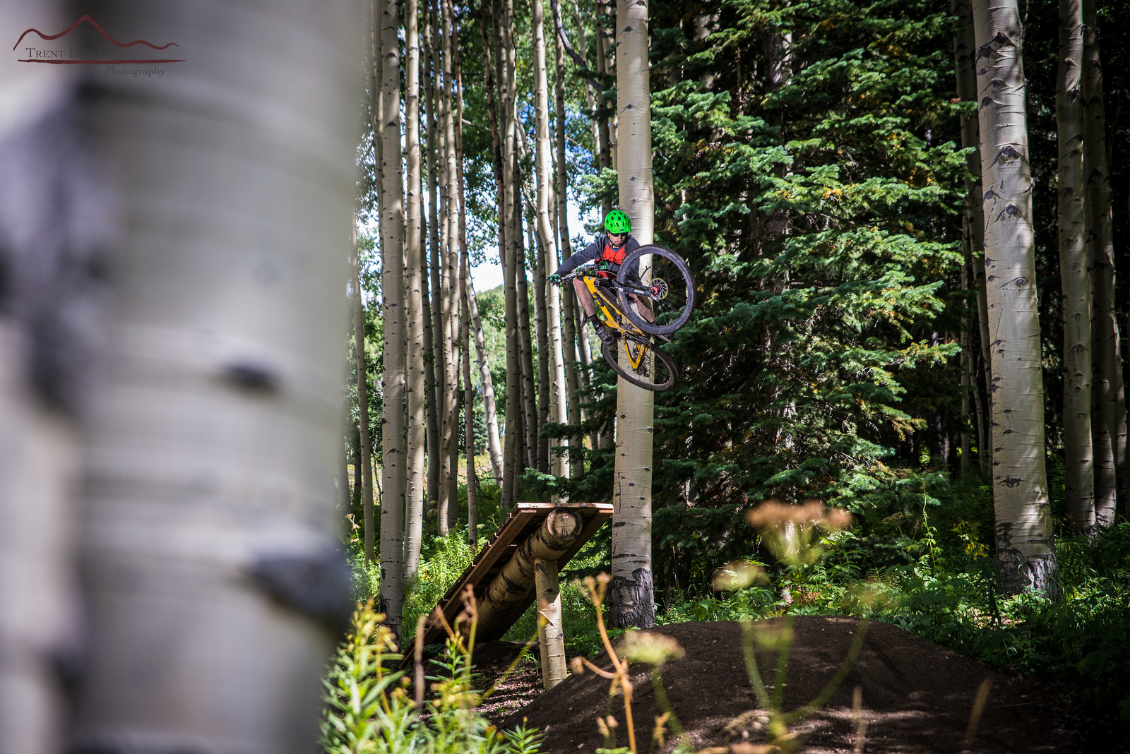 Special Log - Evolution Bike Park - Mountain Biking Pictures - Vital MTB