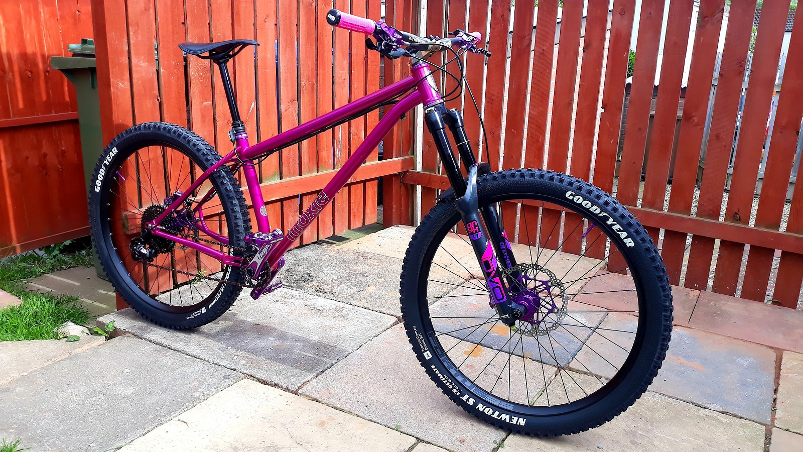 Pipedream Cycles Moxie