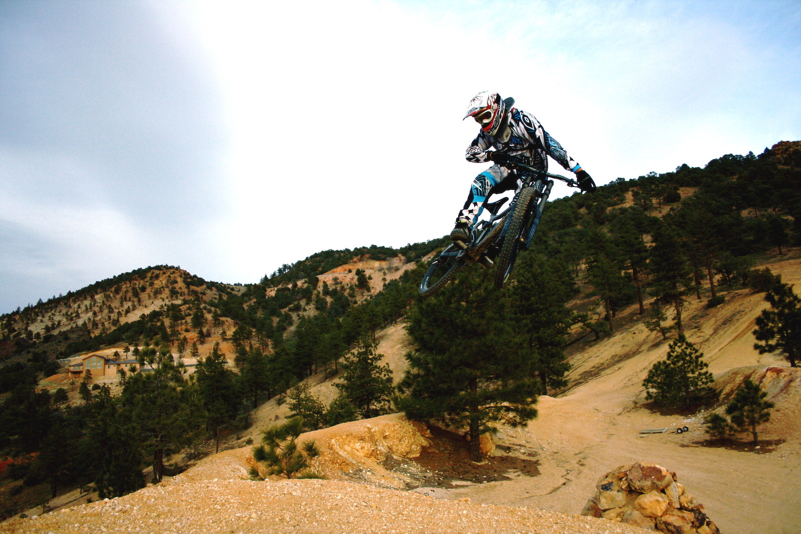 Geiger DH - jptree - Mountain Biking Pictures - Vital MTB