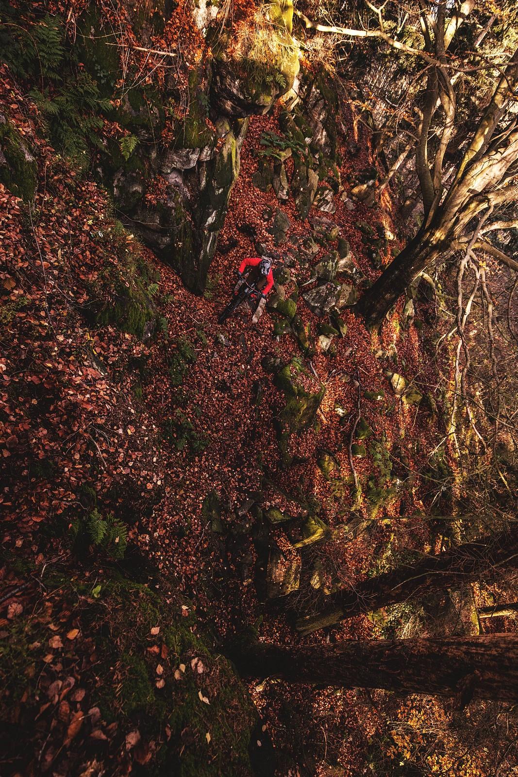 Autumn trail riding - Mad Moss - Mountain Biking Pictures - Vital MTB