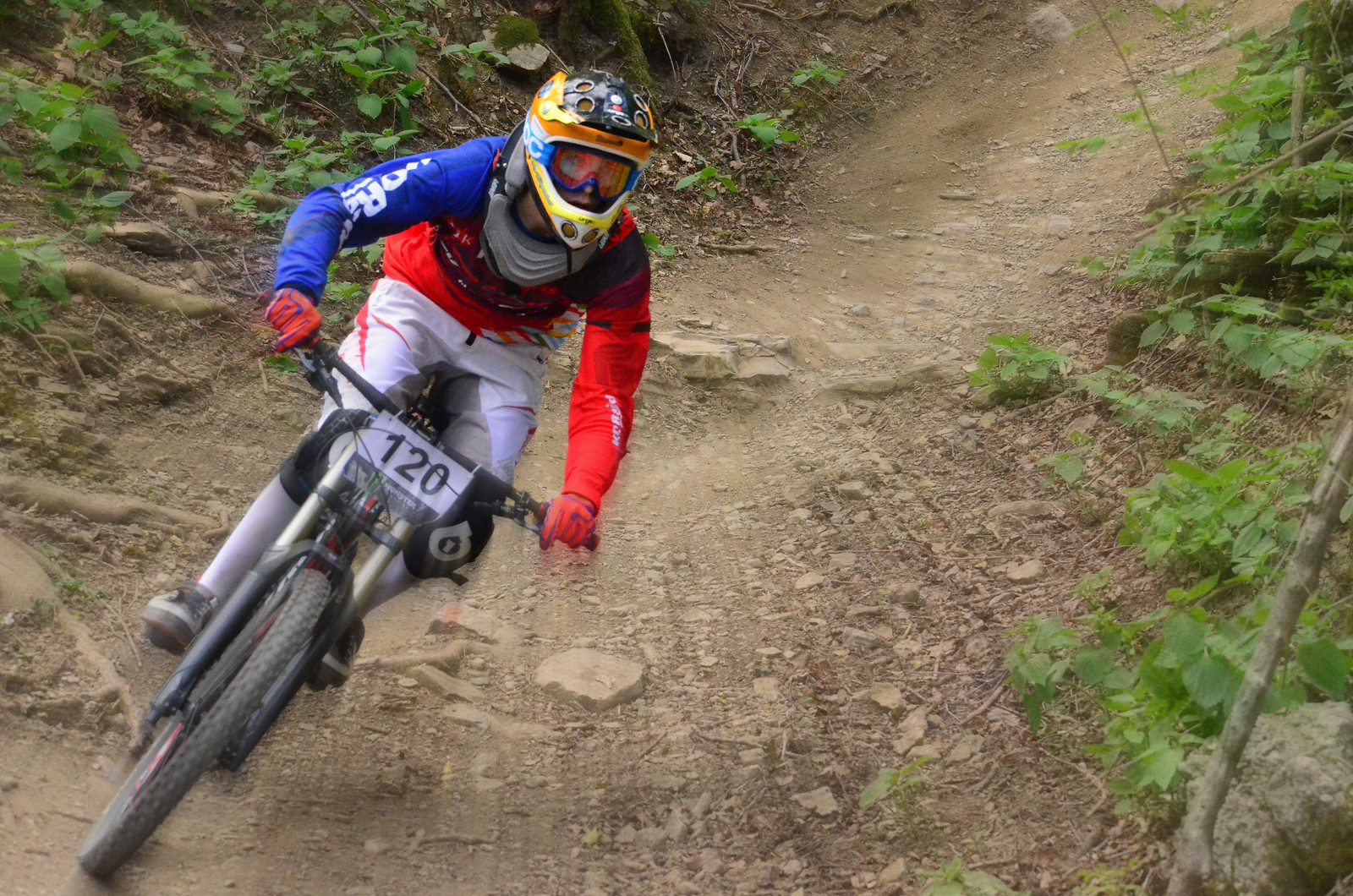 120 - primo - Mountain Biking Pictures - Vital MTB