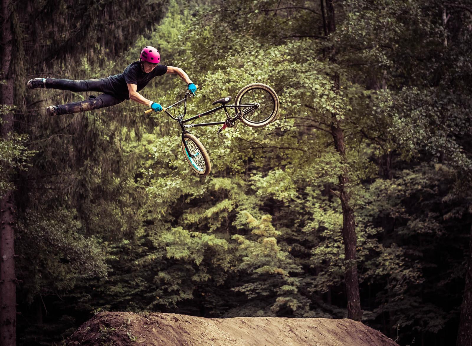 Wild Ride I - berto - Mountain Biking Pictures - Vital MTB