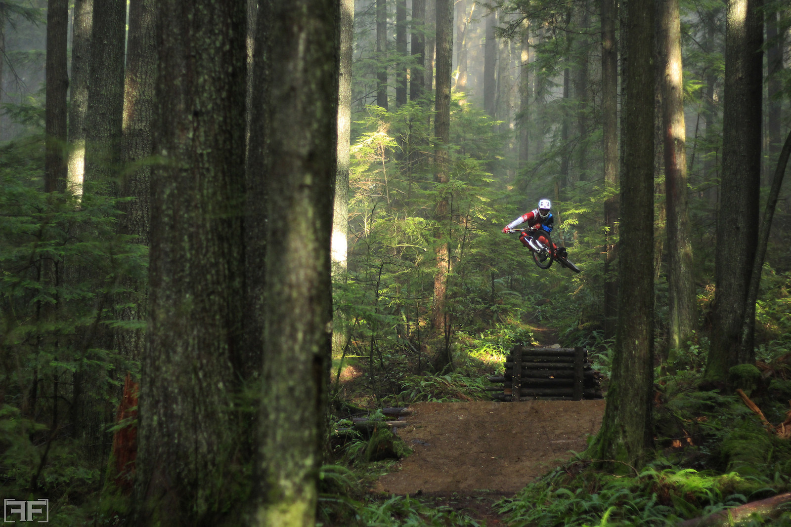 MIsty step down - brygreg - Mountain Biking Pictures - Vital MTB